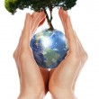 Hands, Earth and the tree — Stock Photo