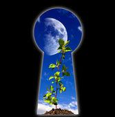Keyhole - the door — Stock Photo
