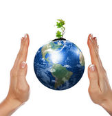 Hands, the sprout and Earth — Stock Photo