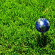 Royalty-Free Stock Photo: Earth - like a golf ball