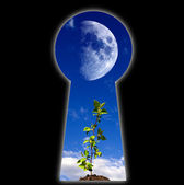 Keyhole - the door — Stock Photo