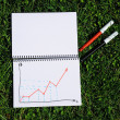 Hand-drawn graph — Stock Photo