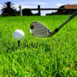 Ball and golf clubs — Stockfoto
