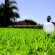Stock Photo: Golf ball on green grass