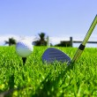 Stock Photo: Ball and golf clubs