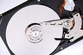 Computer hard disk — Stock Photo