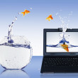 Royalty-Free Stock Photo: Goldfish and laptop