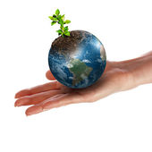 Hands and Earth. — Stock Photo