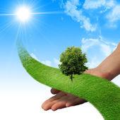 Ręka, linii trawy, — Zdjęcie stockowe