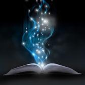 Livre de magie — Photo