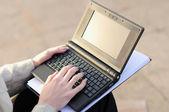 Vrouw die op laptop werkt — Stockfoto