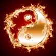 Symbol of yin and yang of the background. — Stock Photo