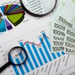 Financial charts and graphs — Stock Photo #4939285