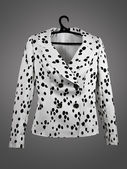 Jacket Dalmatian — Stock Photo