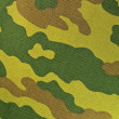 Camouflage Fabric - Zdjcie stockowe