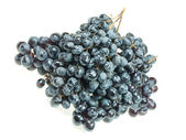 Bunch of dark grapes on a white background — Stock Photo