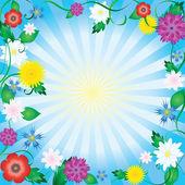 Flower frame. — Stock Vector