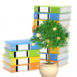 Monetary tree and folders — Stock Photo #2825863