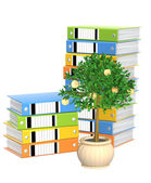 Monetary tree and folders — Stock Photo