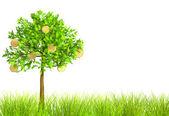3d monetary tree — Stock Photo