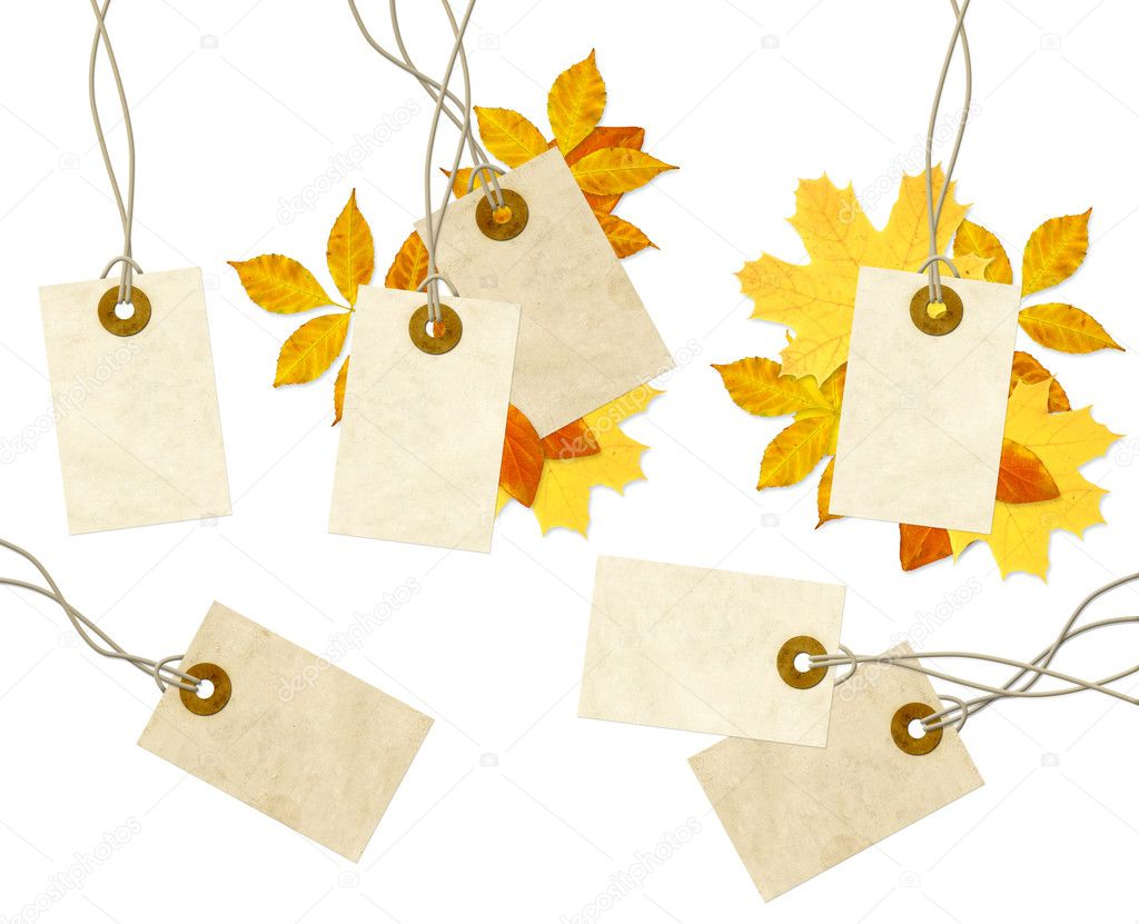 Set - labels and autumn leaves. Isolated over white  Stok fotoraf #3717636
