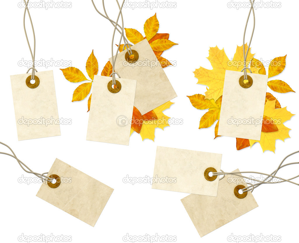 Set - labels and autumn leaves. Isolated over white — Foto Stock #3717636