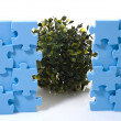 Puzzle and tree - Stock Photo