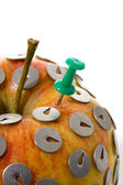 Drawing pin and apple — Stock Photo