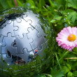 Globe on green grass — Stock Photo