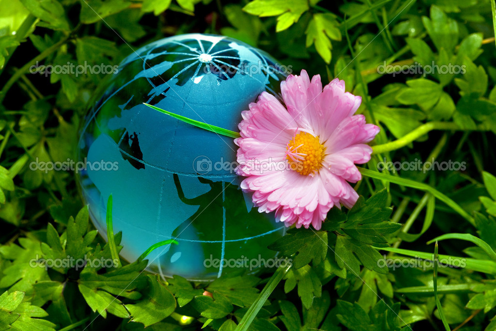 Globe on green grass with daisy  Stock Photo #3163380