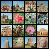 Go to India collage - travel photos — Stock Photo