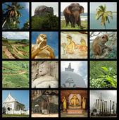 Sri lanka collage with landmark photos — Stock Photo