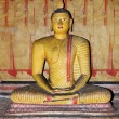 Statue of Buddha at Dambulla cave temple complex,Sri Lanka — 图库照片