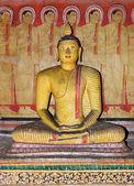 Dambulla mağara tapınak kompleksi, sri lanka, buda heykeli — Stok fotoğraf