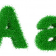 Grass font — Stock Photo