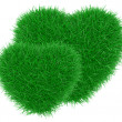 Green grass heart shape. — Stok fotoğraf