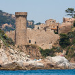Castle on the sea coast — Foto Stock