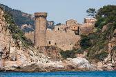 Castle on the sea coast — Stock Photo