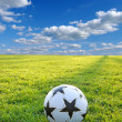 A soccer ball — Stock Photo #2727954