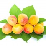 Apricots — Stock Photo #2870141