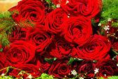 Background roses — Stock Photo