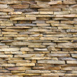 The stone wall — Stock Photo