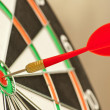 Dart board with red dart — Stockfoto #3859430