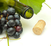 Bunch of grapes and bottle of wine — Stock Photo