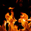 Fire flames - Foto Stock