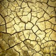 Arid background — Stock Photo #3745474