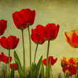Grunge flowers  background - Stockfoto
