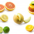 Fruits — Stock Photo #2823070
