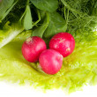 Vegetables - Stockfoto