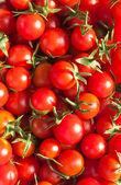 """Rode tomaten """"cherry"""". achtergrond — Stockfoto"""